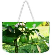 First Avocado Weekender Tote Bag