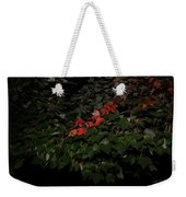 First Fall Colors At Night Weekender Tote Bag