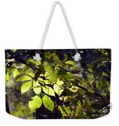 First Morns Light Weekender Tote Bag