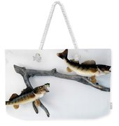 Fish Mount Set 06 A Weekender Tote Bag