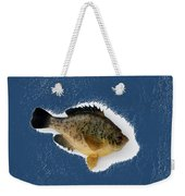Fish Mount Set 08 C Weekender Tote Bag