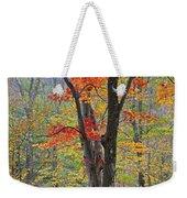 Flaming Fall Foliage Weekender Tote Bag