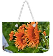 Flaming Sunflowers Weekender Tote Bag