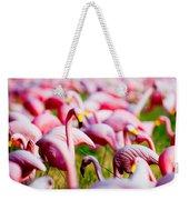 Flamingo 7 Weekender Tote Bag