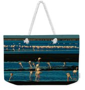 Flamingo Gathering Weekender Tote Bag