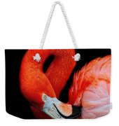 Flamingo Preening Weekender Tote Bag
