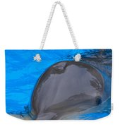 Published Secret Lives Dolphins Weekender Tote Bag
