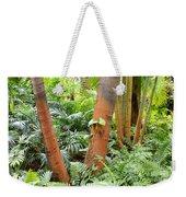 Florida Palms And Ferns Weekender Tote Bag