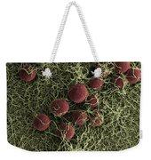 Flowers, Digital Streak Image Weekender Tote Bag