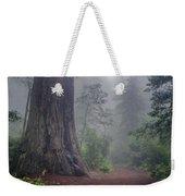 Fog And Redwoods Weekender Tote Bag
