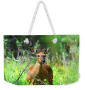 Forest Buck Weekender Tote Bag