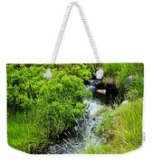 Forest Creek In Newfoundland Weekender Tote Bag