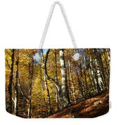 Forest Fall Colors 4 Weekender Tote Bag
