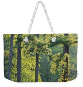 Forest Illumination At Sunset Weekender Tote Bag