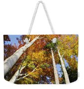Forest In Autumn Bavaria Germany Weekender Tote Bag
