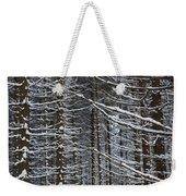 Forest Of Marburg In Winter Weekender Tote Bag