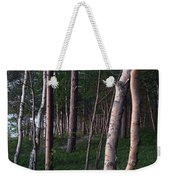 Forest, Shore Of Lake Superior Weekender Tote Bag