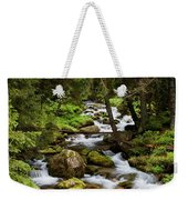 Forest Stream In Tatra Mountains Weekender Tote Bag