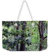 Forest Trees Weekender Tote Bag