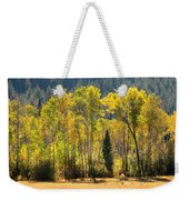 Forested Light Weekender Tote Bag