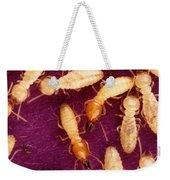 Formosan Termites Weekender Tote Bag