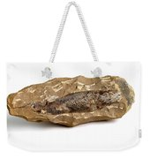 Fossilized Fish Weekender Tote Bag