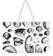 Fossilized Shells, 1844 Weekender Tote Bag