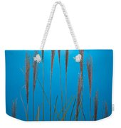 Fountain Grass In Blue Weekender Tote Bag