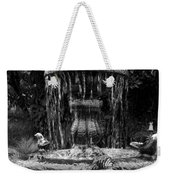 Fountain Weekender Tote Bag