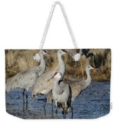 Four Sandhill Cranes Weekender Tote Bag