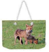 Fox And Baby Weekender Tote Bag