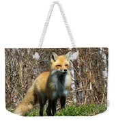 Fox And Birches Weekender Tote Bag
