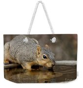 Fox Squirrel Weekender Tote Bag