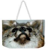 Foxy Eyes Weekender Tote Bag