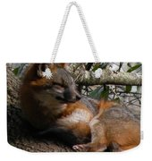 Foxy's Naptime Weekender Tote Bag