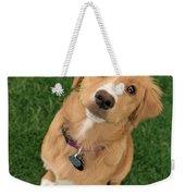 Friendly Dog Weekender Tote Bag