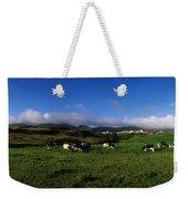 Friesian Cattle, Allihies, Co Cork Weekender Tote Bag
