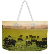 Friesian Cattle Cattle Grazing Weekender Tote Bag