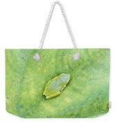 Frog Weekender Tote Bag