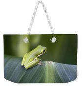 Froggie On A Leaf Weekender Tote Bag