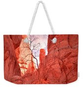 From The Inside Weekender Tote Bag