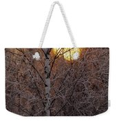 Frost-covered White Birch Trees Weekender Tote Bag