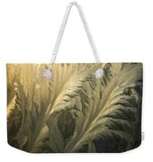 Frost Crystal Patterns On Glass, Ross Weekender Tote Bag