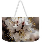 Fruit Bouquet Weekender Tote Bag