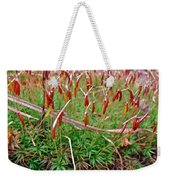 Fruiting Moss - Red And Green Tableau Weekender Tote Bag
