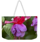 Fuchsia Fuchsia Sp Red And Blue Variety Weekender Tote Bag