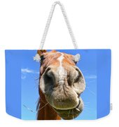 Funny Brown Horse Face Weekender Tote Bag by Jennie Marie Schell