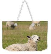 Funny Sheep Weekender Tote Bag