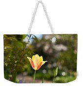 Garden Radiance Weekender Tote Bag