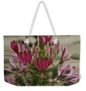Garden Stinkweed Flower 1 Weekender Tote Bag